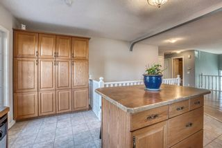 Photo 18: 543 Lake Newell Crescent SE in Calgary: Lake Bonavista Detached for sale : MLS®# A1081450
