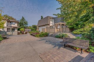 Photo 34: 69 4061 Larchwood Dr in : SE Lambrick Park Row/Townhouse for sale (Saanich East)  : MLS®# 877958