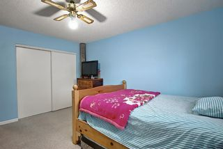 Photo 23: 110 11 Dover Point SE in Calgary: Dover Apartment for sale : MLS®# A1096781