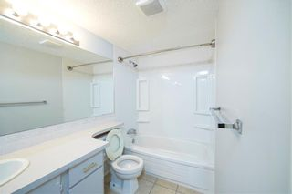 Photo 8: 215 2204 1 Street SW in Calgary: Mission Apartment for sale : MLS®# A1057983