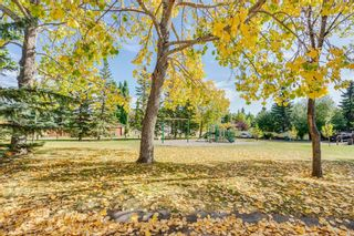 Photo 19: 230 EDGEDALE Place NW in Calgary: Edgemont Semi Detached for sale : MLS®# A1036042