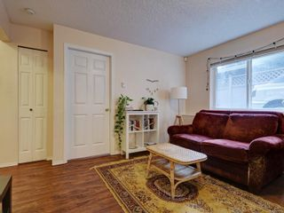 Photo 15: 258 Richmond Ave in : Vi Fairfield East House for sale (Victoria)  : MLS®# 863286
