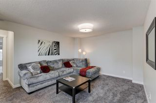 Photo 19: 47 CRANBROOK Green SE in Calgary: Cranston Detached for sale : MLS®# C4276214