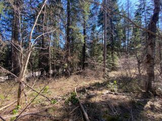Photo 9: Lot L VIEW RIDGE ROAD in Nelson: Vacant Land for sale : MLS®# 2460797