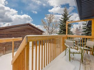 Photo 27: 141 Marquis Place SE: Airdrie Detached for sale : MLS®# A1063847