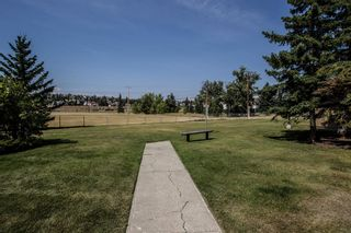 Photo 20: 2308 3115 51 Street SW in Calgary: Glenbrook Apartment for sale : MLS®# A1024636