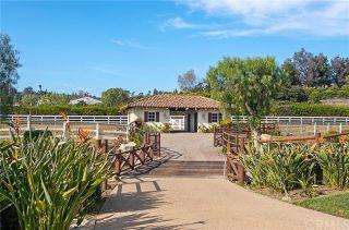 Photo 26: House for sale : 6 bedrooms : 17639 Loma Linda Drive in Rancho Santa Fe