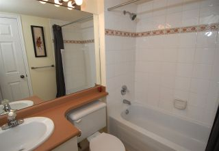 Photo 12: 104 3768 HASTINGS STREET in Burnaby: Willingdon Heights Condo for sale (Burnaby North)  : MLS®# R2059188