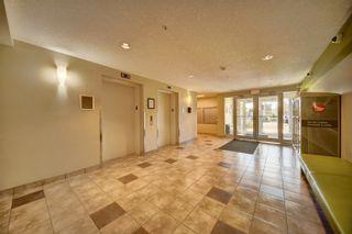 Photo 28: 141 1196 HYNDMAN Road in Edmonton: Zone 35 Condo for sale : MLS®# E4262588