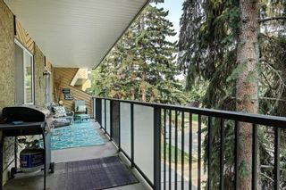 Photo 19: 308 617 56 Avenue SW in Calgary: Windsor Park Apartment for sale : MLS®# A1134178