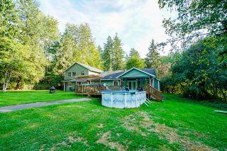 Photo 39: 24445 104 Avenue in Maple Ridge: Albion House for sale : MLS®# R2621324