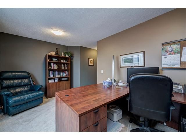 Photo 38: Photos: 137 COVE Court: Chestermere House for sale : MLS®# C4090938