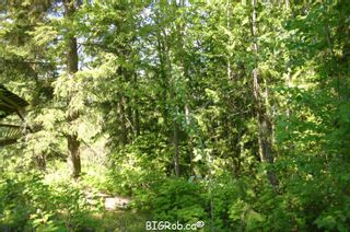 Photo 21: 4827 Goodwin Road in Eagle Bay: Vacant Land for sale : MLS®# 10116745