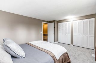 Photo 18: 132 Pineland Place NE in Calgary: Pineridge Detached for sale : MLS®# A1110576