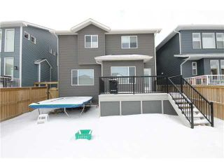 Photo 20: 824 COOPERS Square SW: Airdrie Residential Detached Single Family for sale : MLS®# C3606145