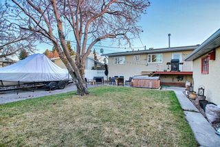 Photo 35: 52 Maple Court Crescent SE in Calgary: Maple Ridge Detached for sale : MLS®# A1092001