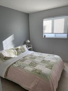 Photo 33: 122 HURON Avenue: Devon House for sale : MLS®# E4266194