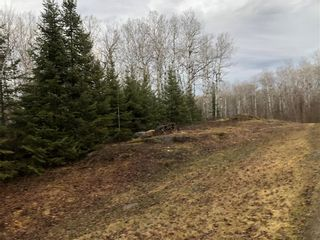 Photo 3: 12 Willow Creek Road: Manigotagan Residential for sale (R28)  : MLS®# 202104694