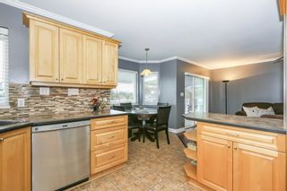 Photo 7: 23341 123RD PLACE in Maple Ridge: East Central House for sale : MLS®# R2354798