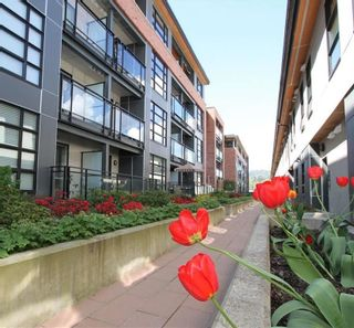 Photo 18: 301 95 MOODY Street in Port Moody: Port Moody Centre Condo for sale : MLS®# R2575069