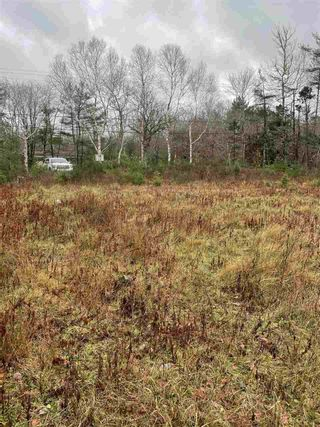 Photo 5: 787 Woodlawn Drive in Jordan Falls: 407-Shelburne County Vacant Land for sale (South Shore)  : MLS®# 202025701