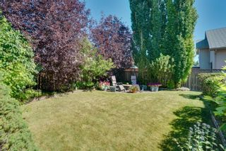 Photo 43: 256 COVENTRY Green NE in Calgary: Coventry Hills Detached for sale : MLS®# A1024304