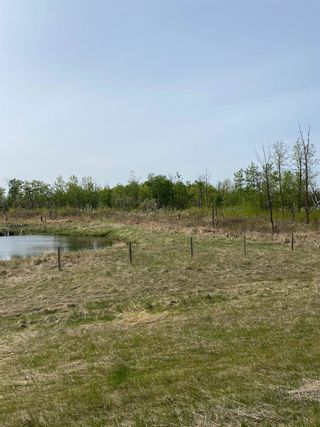 Photo 5: 57202 Hwy 44: Rural Sturgeon County Rural Land/Vacant Lot for sale : MLS®# E4226796