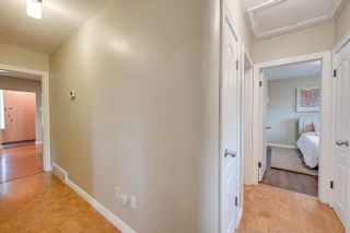 Photo 21: 8116 96 Avenue in Edmonton: Zone 18 House for sale : MLS®# E4253261