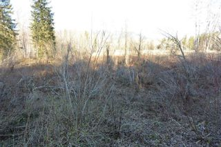 Photo 6: LOT A KLOECKNER Road in Smithers: Smithers - Rural Land for sale (Smithers And Area (Zone 54))  : MLS®# R2598861