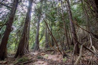 Photo 4: 8817 Canal Rd in : GI Pender Island Land for sale (Gulf Islands)  : MLS®# 874545