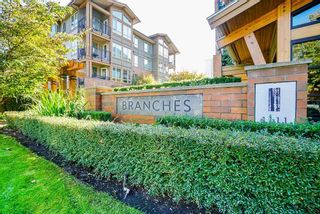 """Photo 1: 301 1111 E 27TH Street in North Vancouver: Lynn Valley Condo for sale in """"BRANCHES"""" : MLS®# R2507076"""