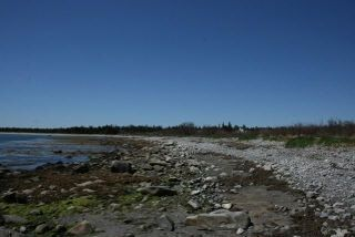 Photo 9: West Sable Road in Little Harbour: 407-Shelburne County Vacant Land for sale (South Shore)  : MLS®# 201911281
