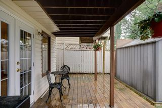 Photo 36: 144 SHAWINIGAN Drive SW in Calgary: Shawnessy Detached for sale : MLS®# A1131377