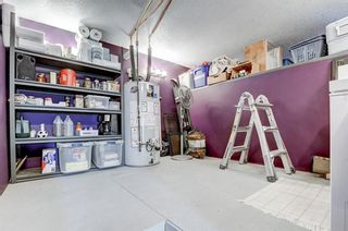 Photo 31: 3203 12 Avenue SE in Calgary: Albert Park/Radisson Heights Detached for sale : MLS®# A1139015