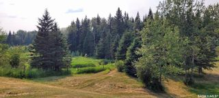 Photo 27: Forest Edge Acreage in Meadow Lake: Residential for sale (Meadow Lake Rm No.588)  : MLS®# SK865219