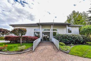 "Photo 12: 221 7156 121 Street in Surrey: West Newton Townhouse for sale in ""Glenwood Village"" : MLS®# R2215838"