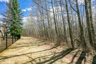 Photo 50: 1524 HEFFERNAN Close in Edmonton: Zone 14 Attached Home for sale : MLS®# E4241611