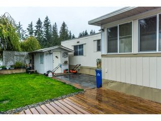 """Photo 18: 179 3665 244 Street in Langley: Otter District Manufactured Home for sale in """"LANGLEY GROVE ESTATES"""" : MLS®# R2316679"""