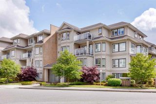 """Photo 1: 107 8142 120A Street in Surrey: Queen Mary Park Surrey Condo for sale in """"Sterling Court"""" : MLS®# R2583529"""