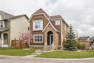 Photo 33: 25 BRIGHTONCREST Rise SE in Calgary: New Brighton Detached for sale : MLS®# A1110140