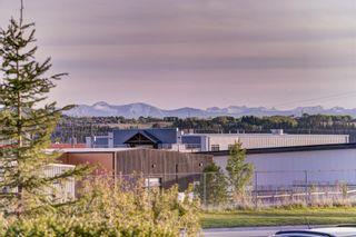 Photo 49: 13 Bentley Place: Cochrane Detached for sale : MLS®# A1115045