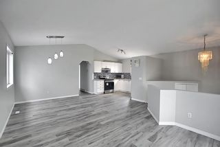 Photo 6: 125 Martin Crossing Way NE in Calgary: Martindale Detached for sale : MLS®# A1117309