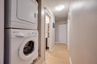 Photo 17: 7944 76 Avenue in Edmonton: Zone 17 House for sale : MLS®# E4264457