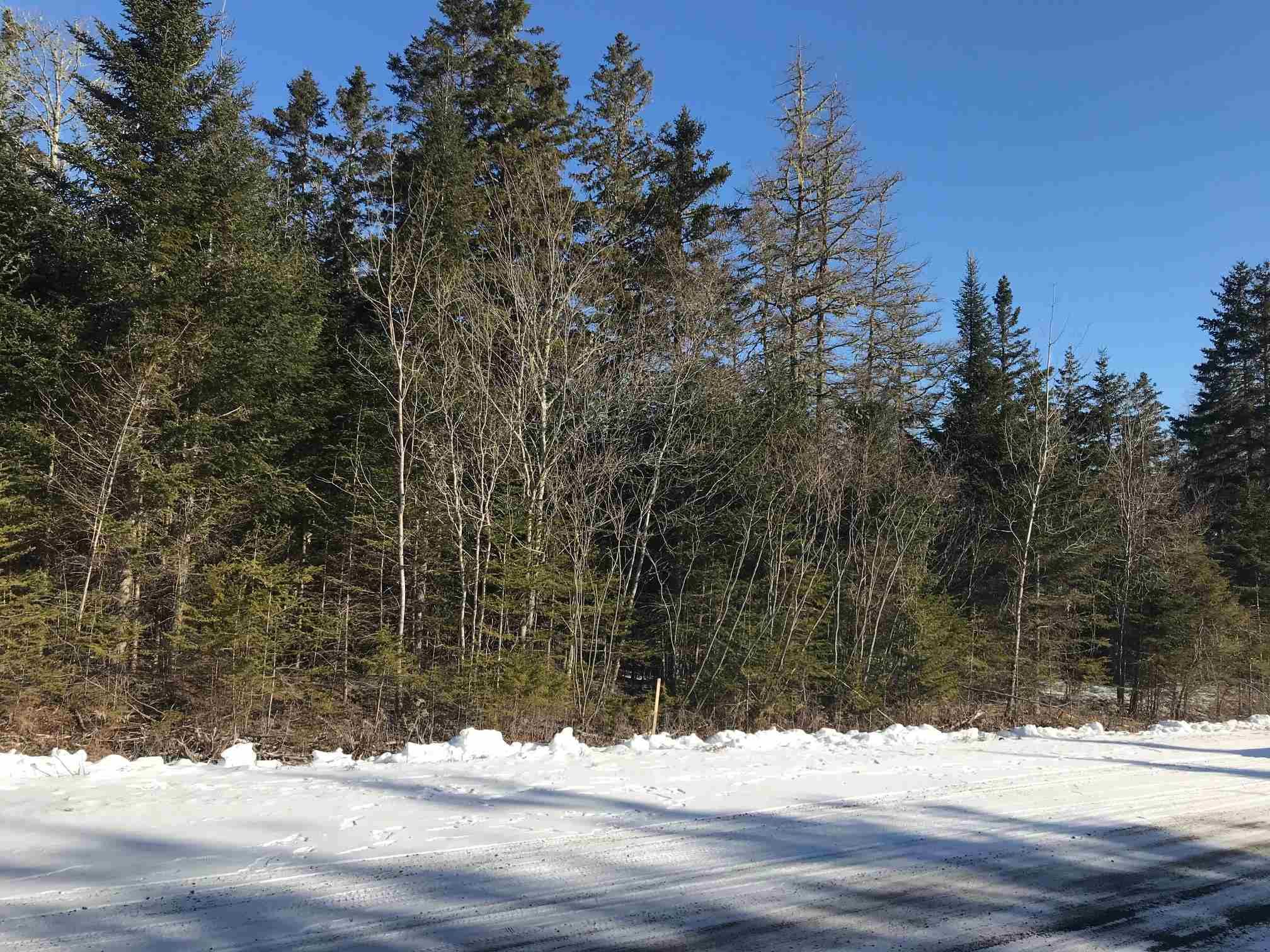 Main Photo: Lot 11 Jared Road in Harmony: 104-Truro/Bible Hill/Brookfield Vacant Land for sale (Northern Region)  : MLS®# 202105545