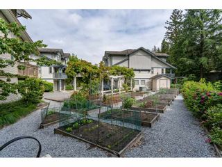 Photo 19: 35 19250 65 Avenue in Surrey: Clayton Townhouse for sale (Cloverdale)  : MLS®# R2374516