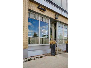 Photo 33: 702 2505 17 Avenue SW in Calgary: Richmond Condo for sale : MLS®# C4067660