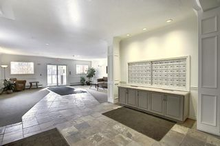 Photo 41: 218 838 19 Avenue SW in Calgary: Lower Mount Royal Apartment for sale : MLS®# A1070596