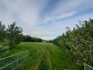 Photo 1: 53145 RGE RD 223: Rural Strathcona County Rural Land/Vacant Lot for sale : MLS®# E4250369