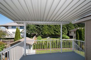 Photo 18: 12062 201B Street in Maple Ridge: Northwest Maple Ridge House for sale : MLS®# V1074754