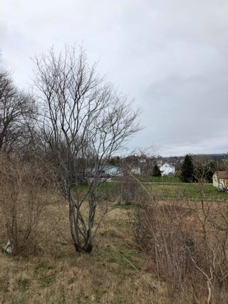 Photo 3: 22 WEST Street in Digby: 401-Digby County Vacant Land for sale (Annapolis Valley)  : MLS®# 202108940